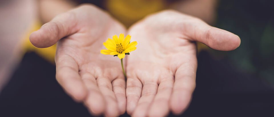 How to Forgive: Forgiveness and Letting Go Even When It Seems Impossible