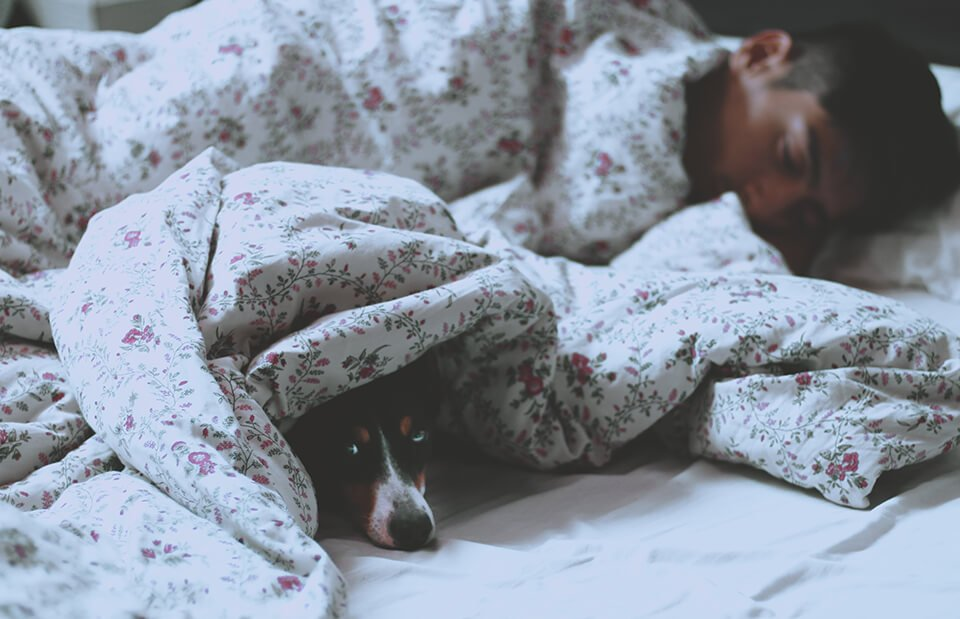 Meditation helps sleep