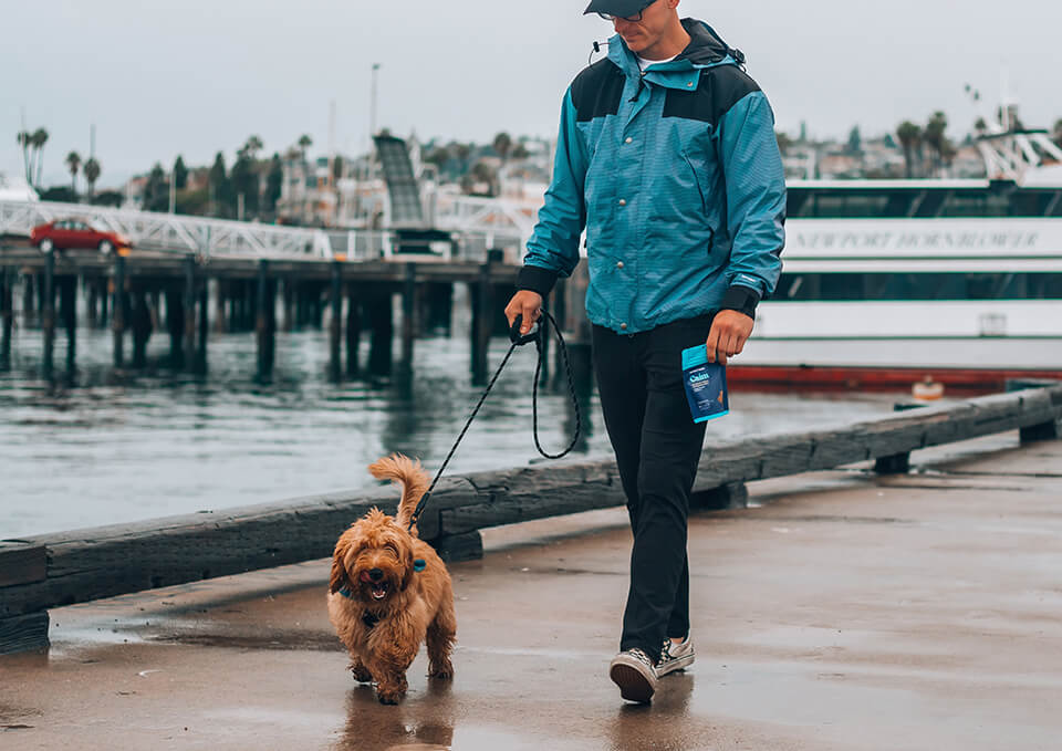 Man walking his dog